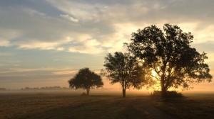 sunrise100814