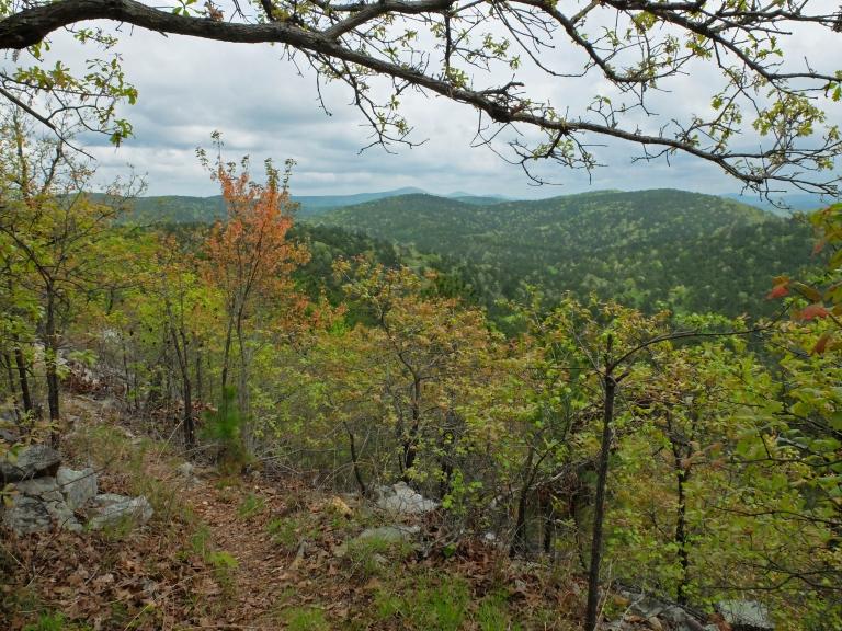 A beautiful vista from the ridgeline