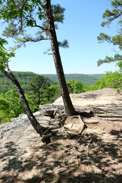 Overlook on Hideout Hollow Trail