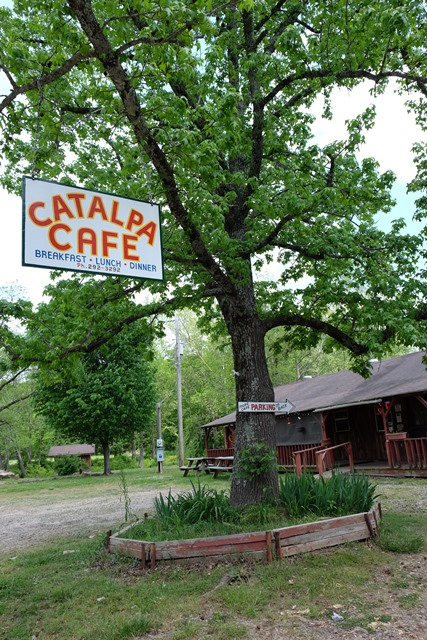 Catalpa Cafe