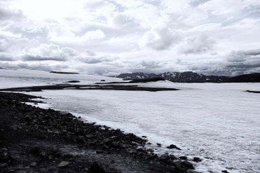 Snow Field3