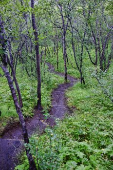 Thorsmork Path