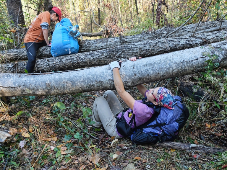 Jan and Pam negotiate deadfall on the trail. There were many trees down across the trail, especially on Section 2.